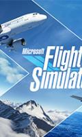 Microsoft Flight Simulator.jpg